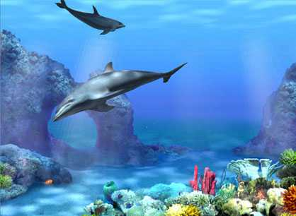 Free Living 3D Dolphins